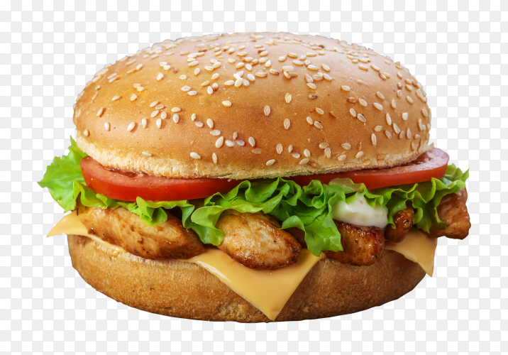 Delicious burger PNG