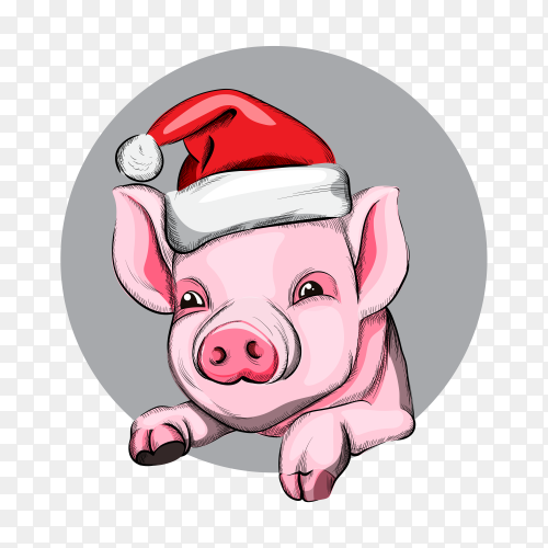 Happy new year pig year symbol with red cap PNG