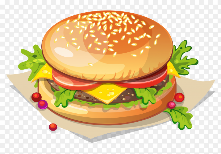 Burger illustration vector free PNG