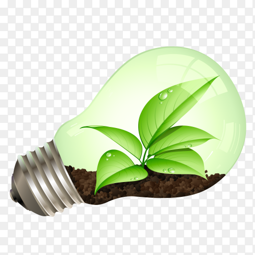 Light bulb with tree leaves transparent PNG