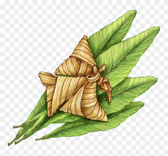 Traditional hand drawn ketupat transparent PNG