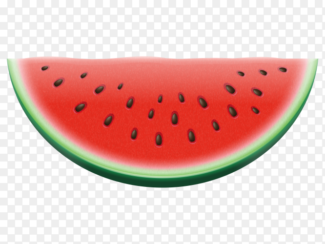 Vector watermelon Free Vector PNG