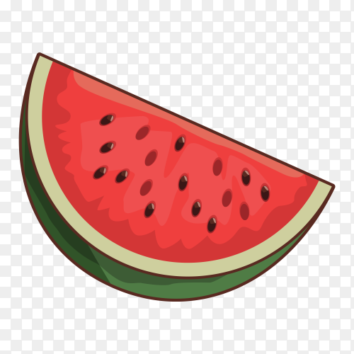 Watermelon fruit vector PNG