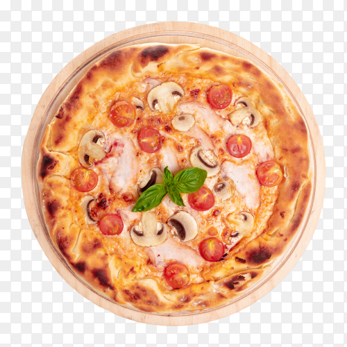 Tasty italian pizza transparent PNG
