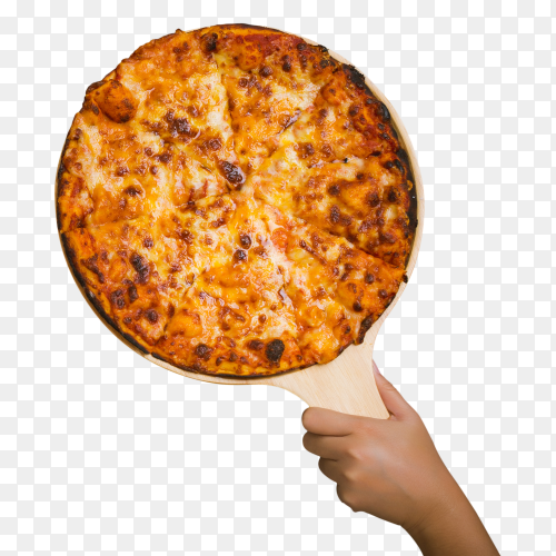 Tasty pizza PNG