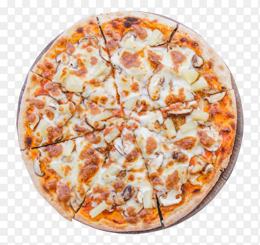 Vegetarian pizza PNG