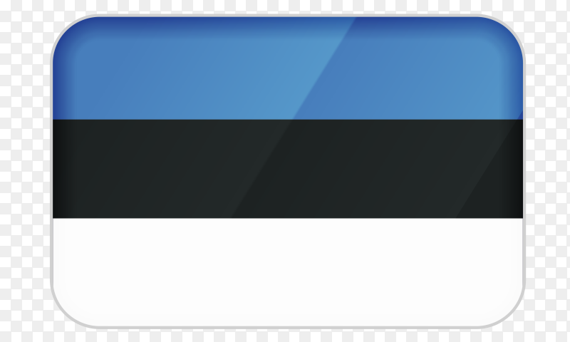 Estonia flag icon on transparent background PNG