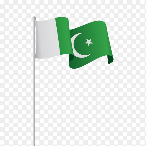 Flag pakistan vector PNG