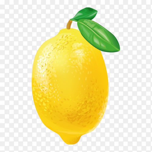 Fresh Lemon royalty free PNG
