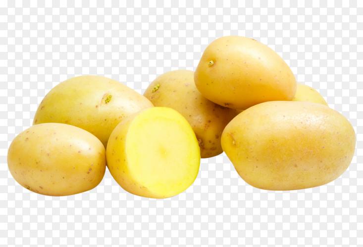 Fresh Potato premium photo PNG