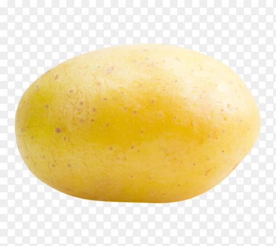 Fresh potato photo PNG