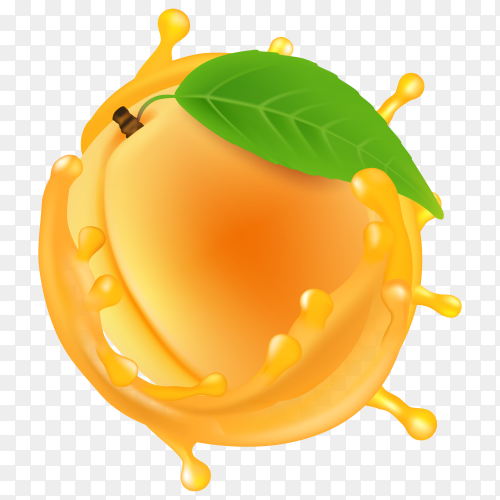 Peach with juice vector transparent PNG