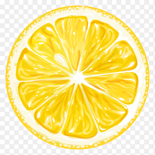 Vector lemon slice transparent PNG
