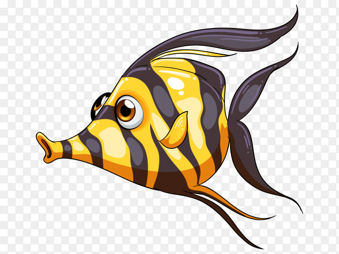 A stripe colored fish on transparent PNG
