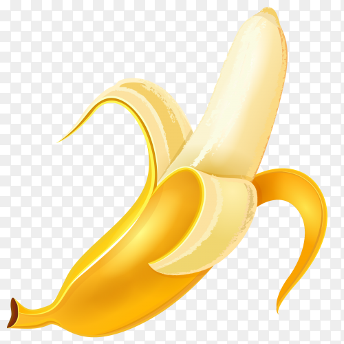 Banana Fruit vector PNG