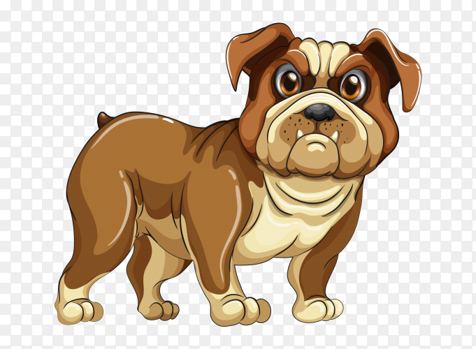 Brown Bull Dog on transparent background PNG