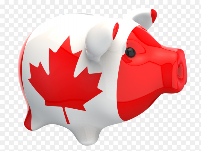 Canada flag shaped on piggy bank vector PNG
