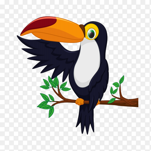 Cartoon happy bird toucan on transparent PNG