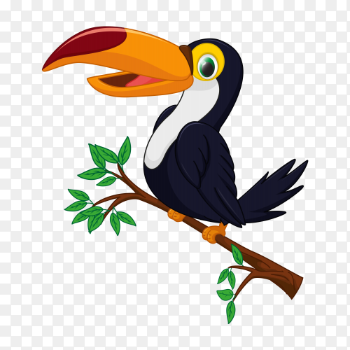 Cartoon toucan bird on a tree branch vector PNG