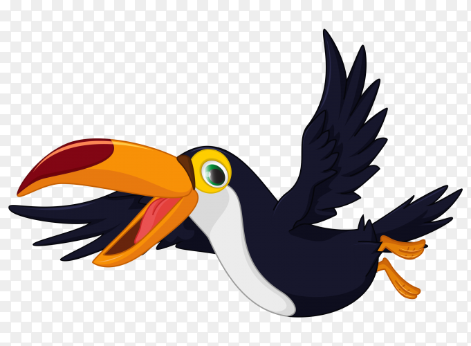 Cute Cartoon Toucan Bird Flying vector PNG