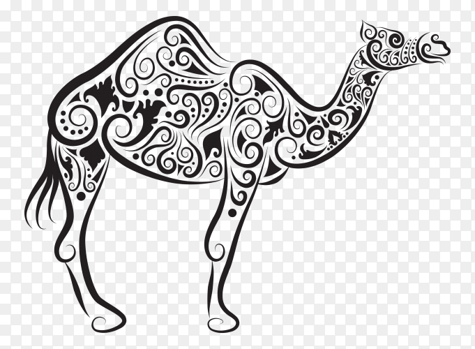 Drawing lines pattern for camel vector PNG