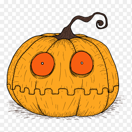 Halloween pumpkin by hand drawing on transparent PNG