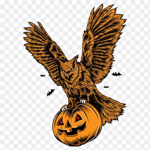 Owl with pumpkin vector PNG