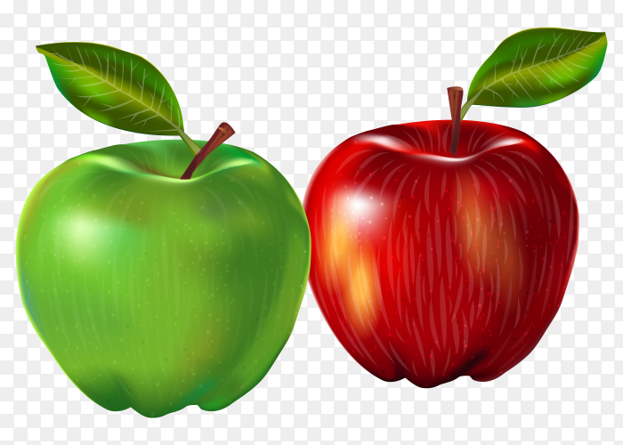 Red and Green apples with transparent background PNG