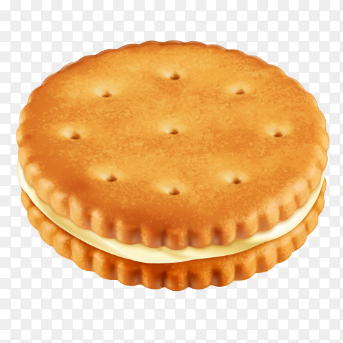 Ritz cracker on transparent background PNG