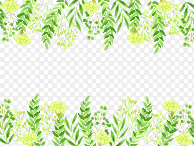 Spring leaves frame on transparent PNG