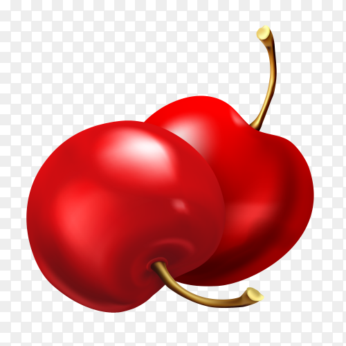Sweet And Sour Delicious Red Cherry vector PNG