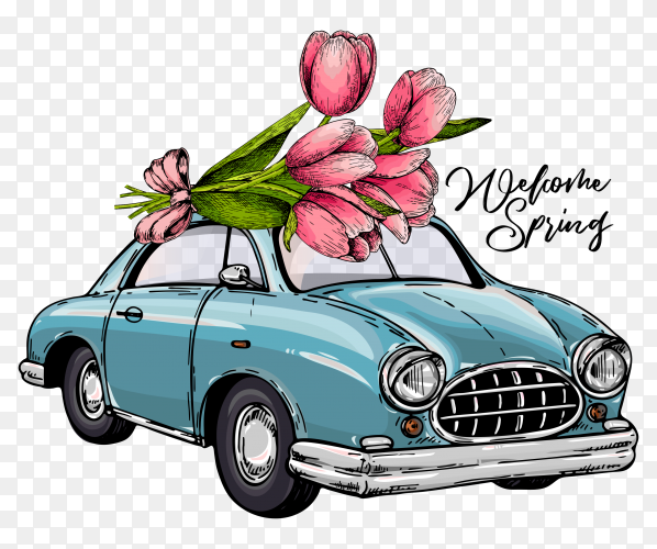 Vector Easter car driving bouquet of tulips on transparent PNG