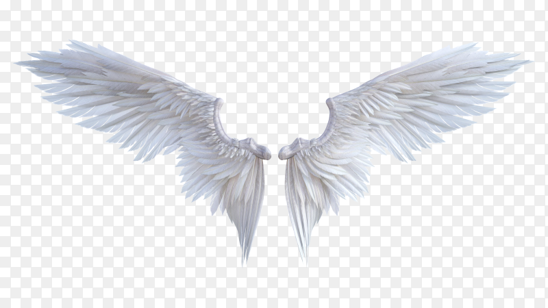 3D angel wings on transparent background PNG