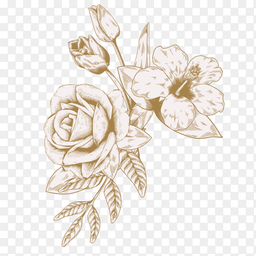 Beautiful flower on transparent PNG