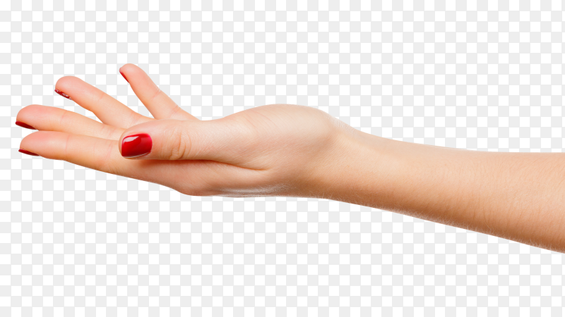 Beautiful woman hand sign holding on transparent PNG
