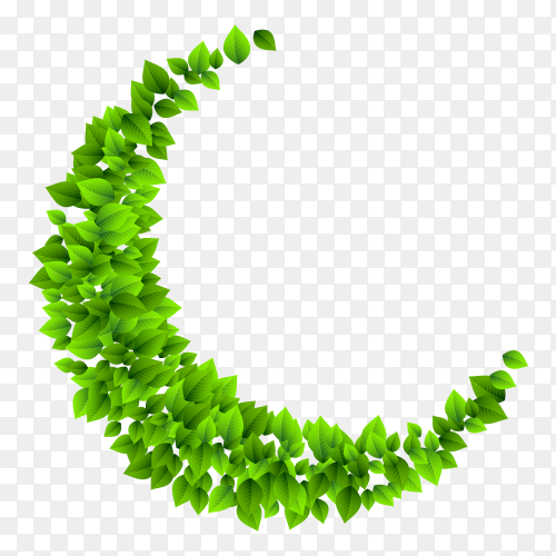 Bunch leaves crescent shape on transparent PNG