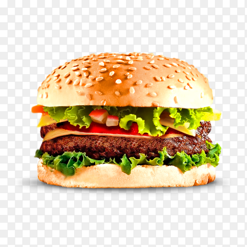 Burger sandwatch on transparent background PNG