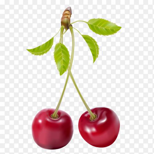 Cherry icon isolated Premium Vector PNG