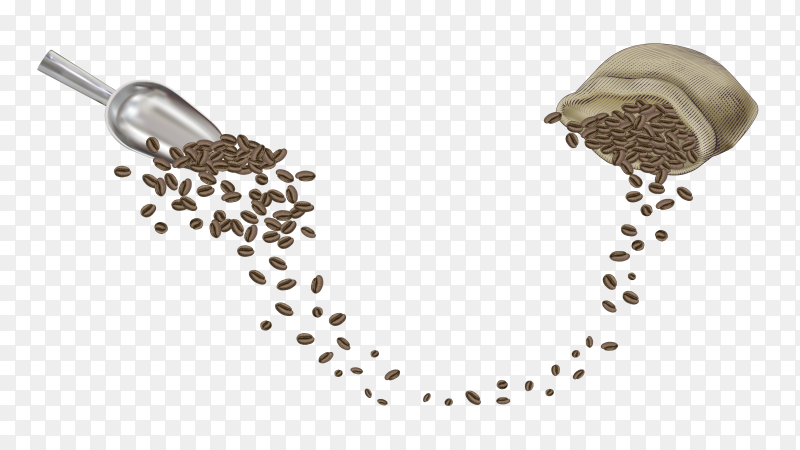 Coffee beans on transparent background PNG