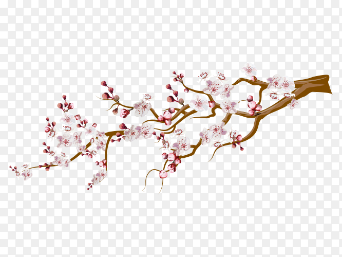 Colorful branch with flower vector PNG
