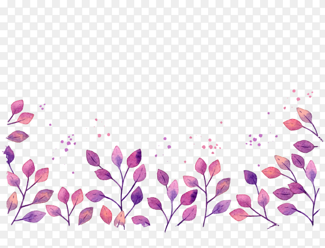 Colorful flower on transparent PNG