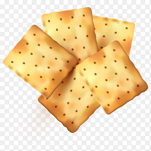Cracker cookies on transparent background PNG