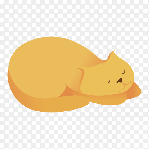Cute cat slepping on transparent PNG