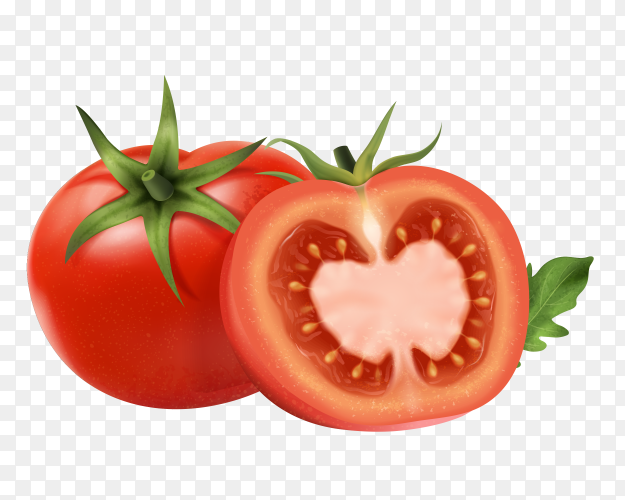 Fresh tomatoes with green on transparent PNG