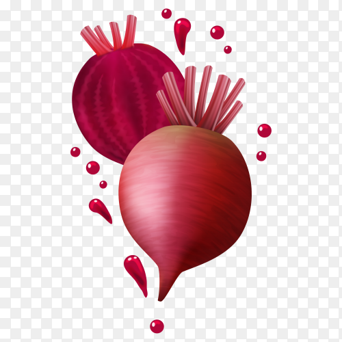 Fresh beetroot clipart PNG