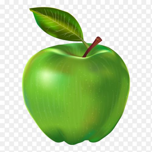 Fresh green apple on transparent background PNG