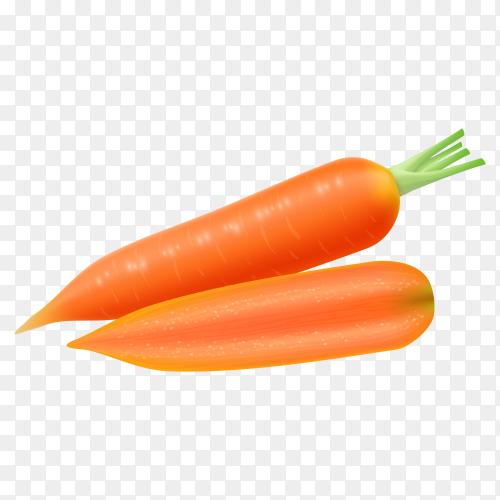 Fresh orange  carrots premium vector PNG