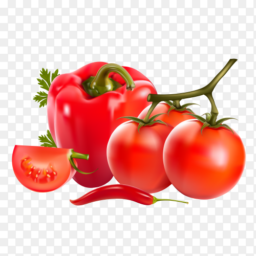 Fresh red tomato and red paper vector PNG