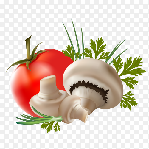 Fresh tomato and Mushrooms Premium vector PNG