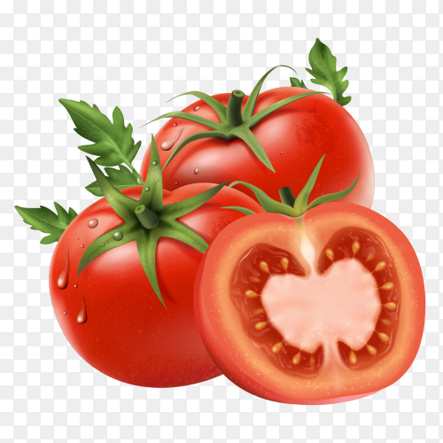 Fresh tomatoes on transparent background PNG